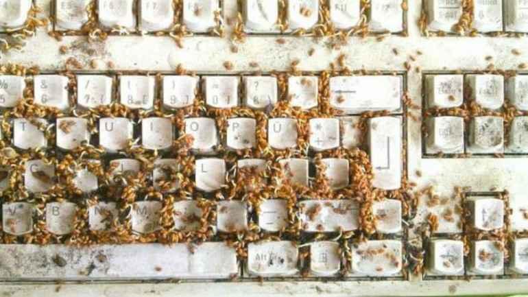 en kirli yer- klavye